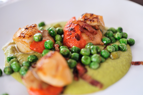 Scallops, peas, samphire